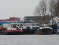 Lauwerzee Treffers Haarlem.