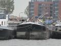 Animo Spaarne Haarlem.