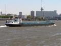 Anita Rotterdam.