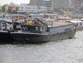 Antje Rotterdam.