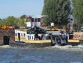 Matricaria op het Amsterdam Rijnkanaal.