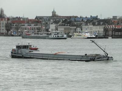 Nehalennia. in Dordrecht.