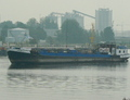 Marpol 17 in Amsterdam.