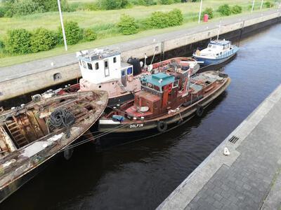 Dolfijn aan de Oostersluis in Groningen.